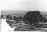 1941 Borghi Terzo Celere 029
